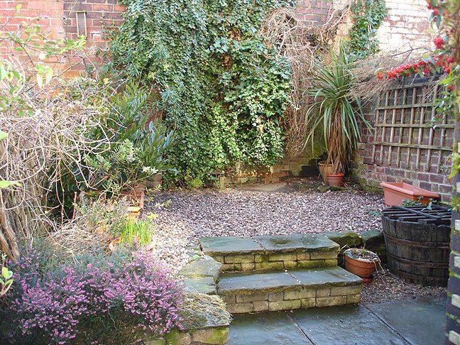 43 Wayland Road garden - shared